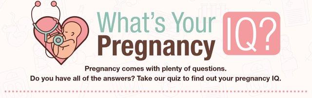 pregnancyiq.png