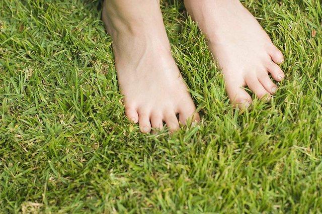 barefootlawn.jpg.jpe