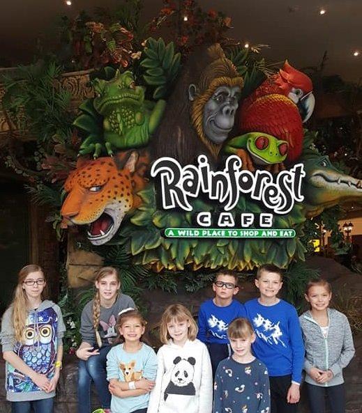 rainforestcafe-1.jpg.jpe