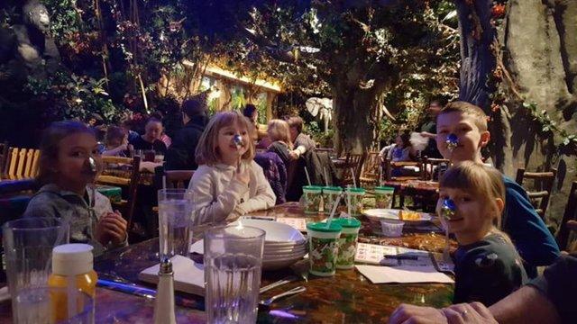 rainforestcafe4-768x432.jpg.jpe