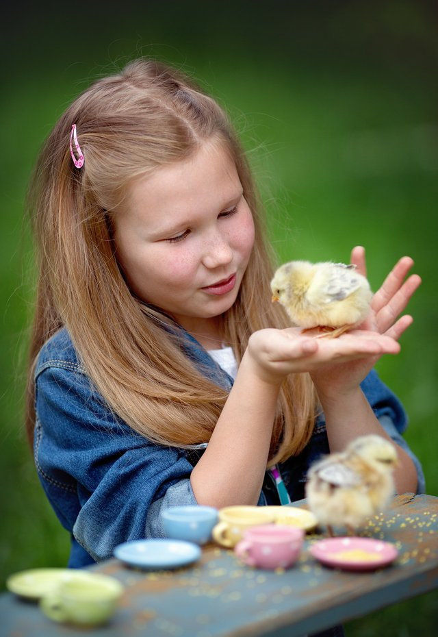 imagesevents27425girl-with-chick-jpg.jpe