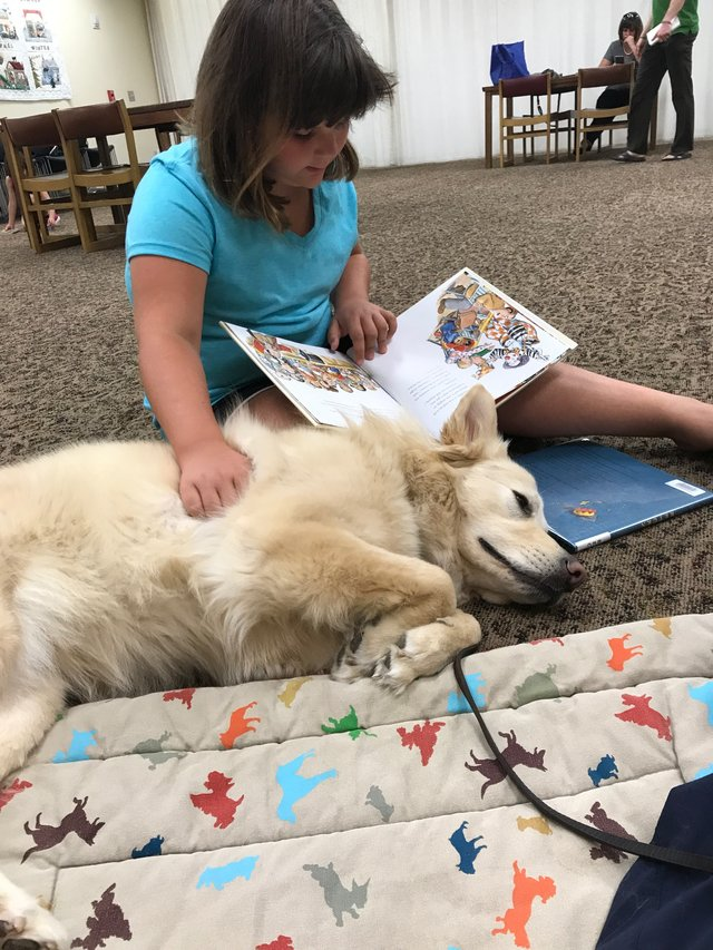 imagesevents27575Read-To-A-Dog-Caymus-JPG.jpe