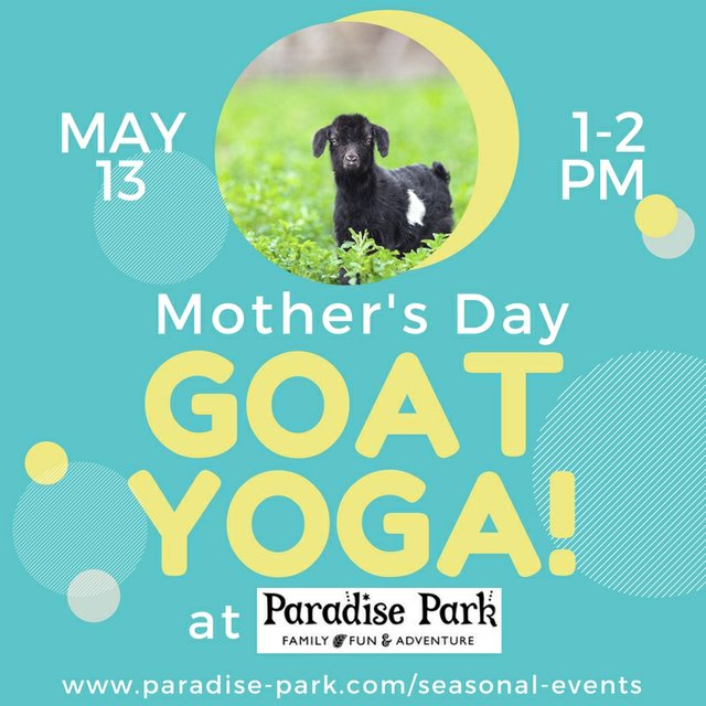 imagesevents28088GoatYogaMothersDay-jpg.jpe
