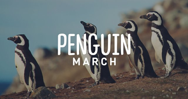 imagesevents28524penguin-march-Thumb-jpg.jpe
