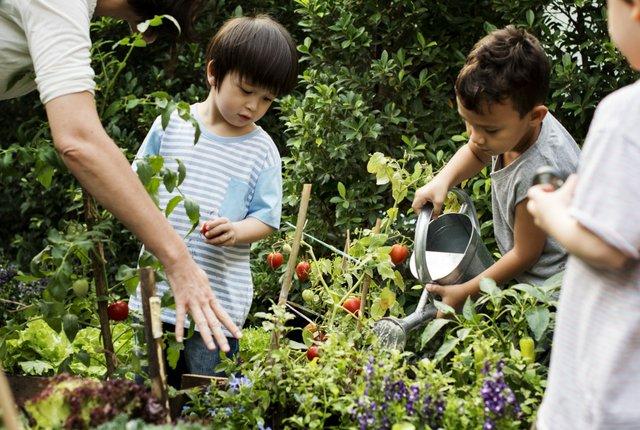 imagesevents28705kids-gardening-jpg.jpe
