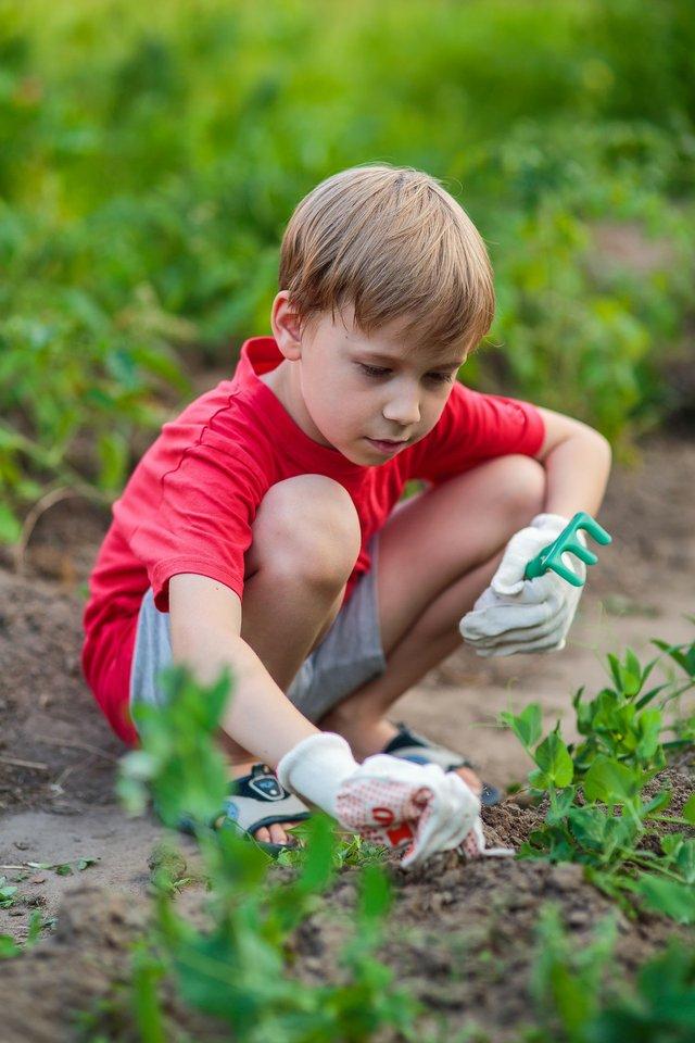 imagesevents28708child_gardening-jpg.jpe
