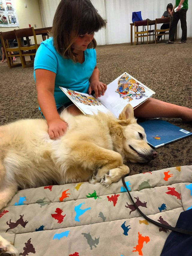 imagesevents28721Read-To-A-Dog-Caymus-JPG.jpe