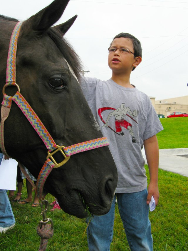 imagesevents28920horses_at_the_library-jpg.jpe