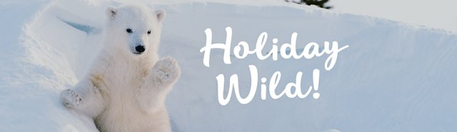 imagesevents30492holidaywild-eventbanner-jpg.jpe