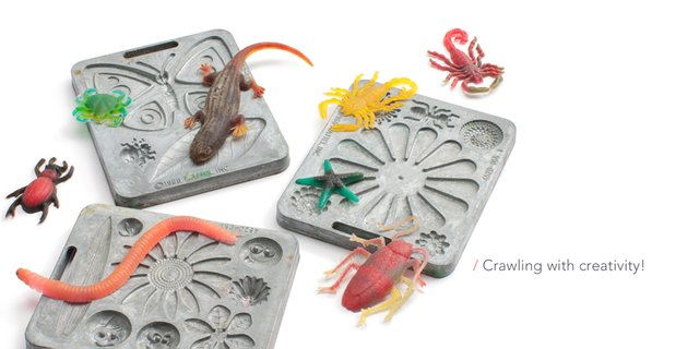 imagesevents31180creepy-crawlers-jpg.jpe