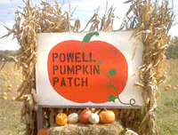 Powell Pumpkin Patch