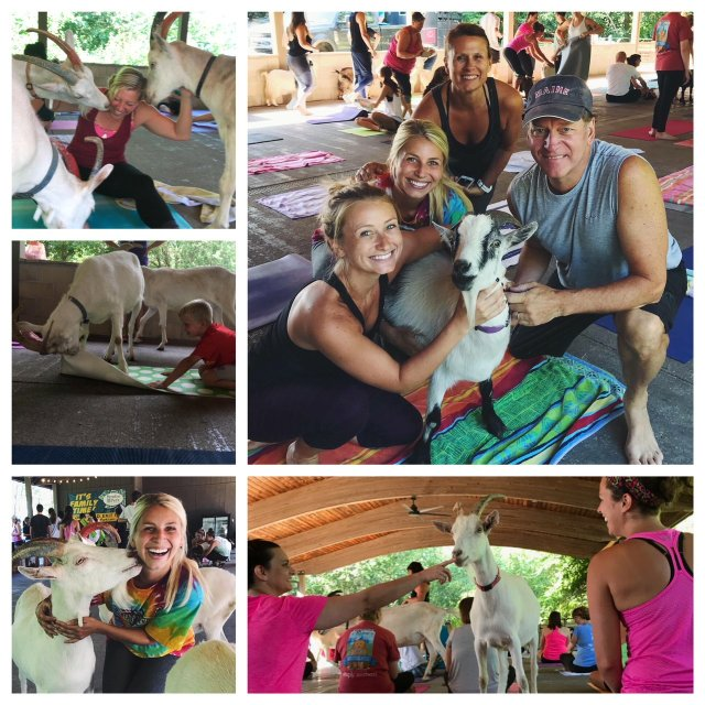 imagesevents31512collage-jpg.jpe