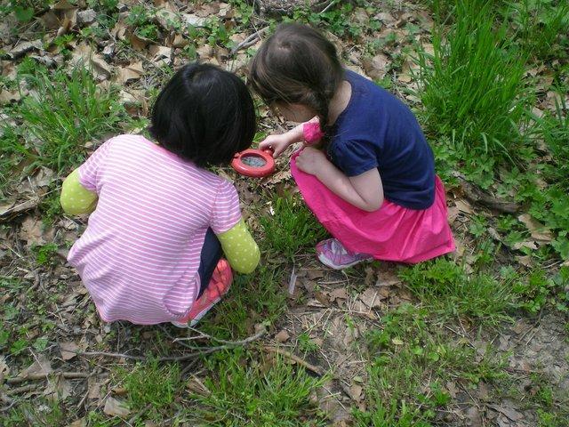 imagesevents31630PreschoolBugHunt-JPG.jpe