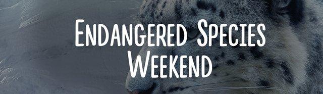 imagesevents31776Endangered-Species-weekend-event-banner-jpg.jpe