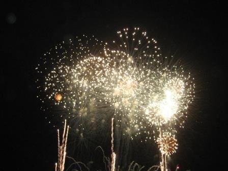 imagesevents32383lansingfireworks-jpg.jpe