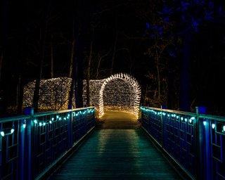 festival_of_lights.jpg