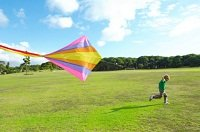 kiteflying.jpg.jpe