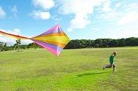kiteflying.jpg.jpe