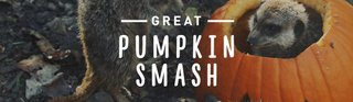 great-pumpkin-smash-eventbanner.jpg