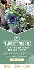 FTN_Harvest_Workshop.jpg