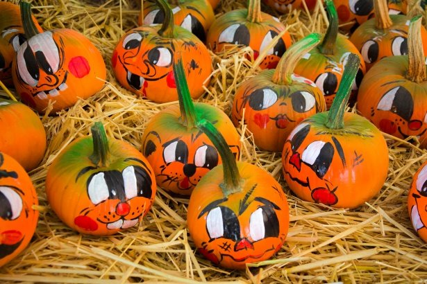painted-pumpkins-1504718803SDw.jpg