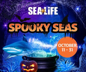 Spooky Seas_300x250.jpg