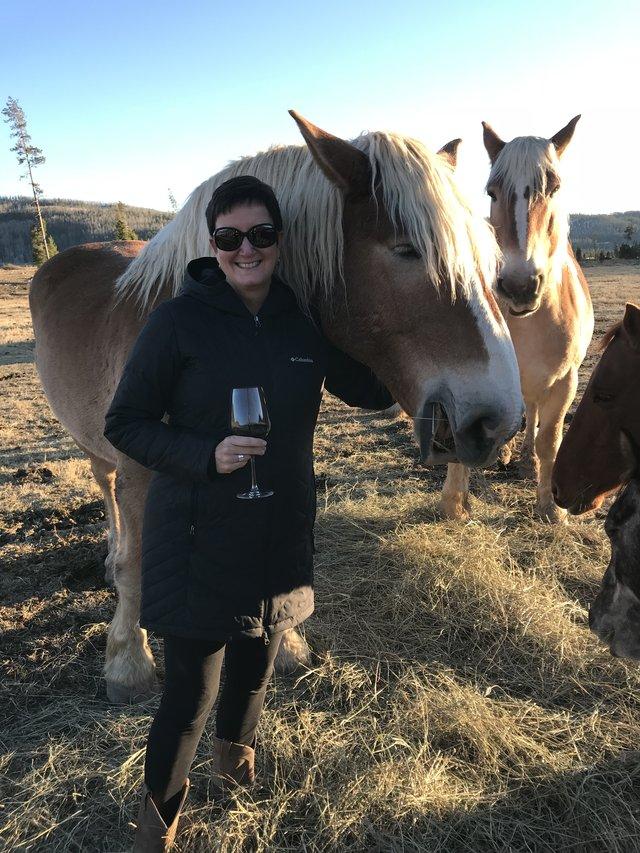 happy hour with horses.jpg
