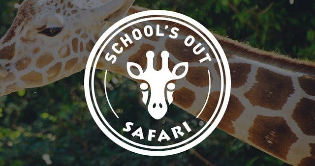 kansas-city-day-camps-school-s-out-safari-thumbnail.jpg