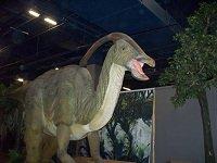dinosaursunearthed2.jpg.jpe