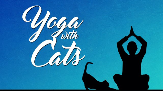 Yoga with cats.jpg