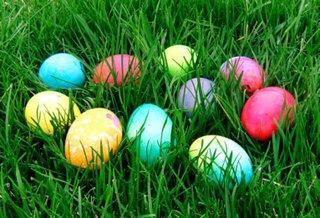 egg_oakwood.jpg