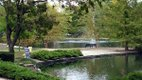 loose_park_pond.jpg