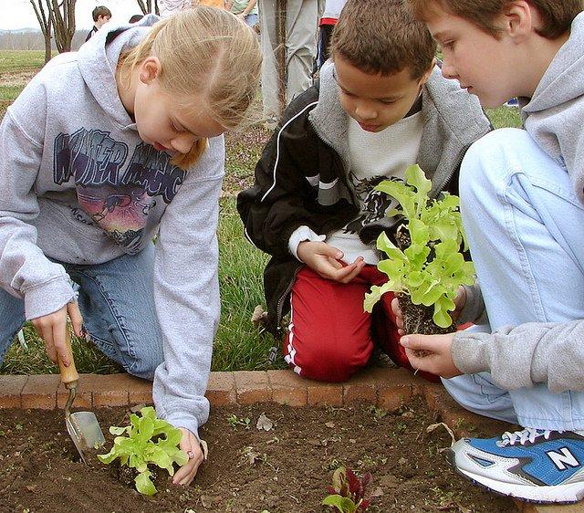 kids-gardening.jpeg