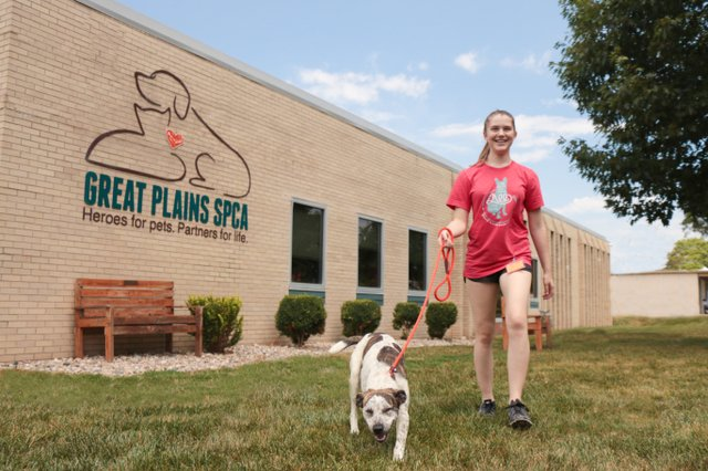 Great Plains SPCA volunteer walking a dog at our Merriam Campus.jpg