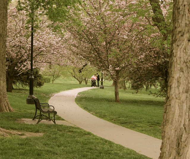 Loose Park 2.jpg