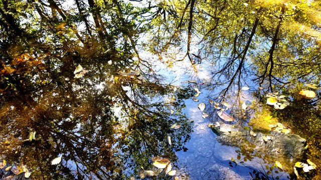 Antioch Park 2.jpg