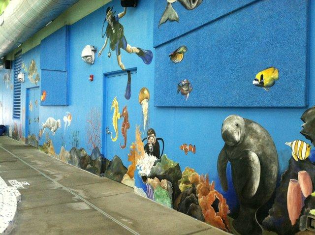 Blue Valley Rec Aquatic Center 2.jpg