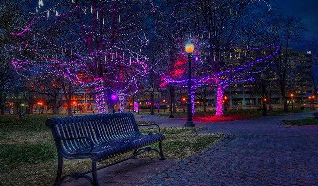 Washington Square Park 2.jpg