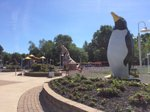 Penguin Park.jpg