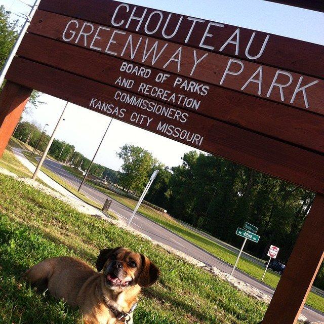 Chouteau Greenway Park 2.jpg
