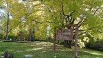 Crestview Park.jpg