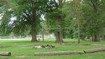 Holmes Park.jpg