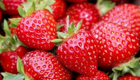 strawberris.jpg.jpe