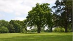 Klapmeyer Park.jpg
