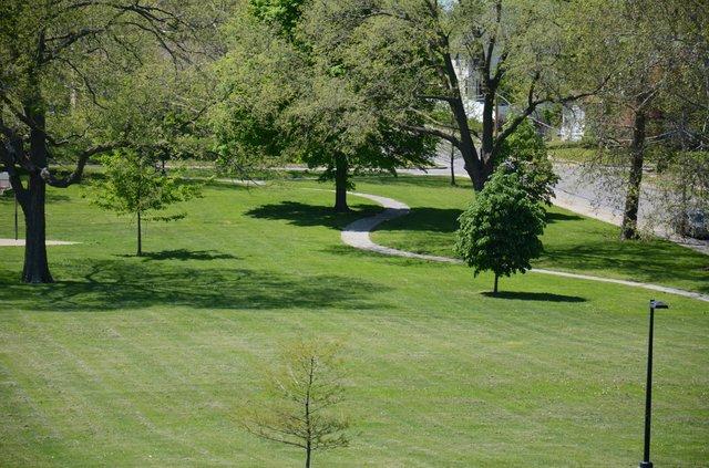 Montgall Park 4.jpg