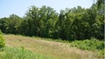 Riverview Greenway.jpg