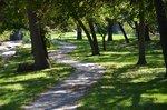 Town Fork Creek Greenway.jpg