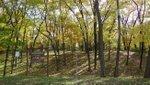Woodsmoke Park.jpg