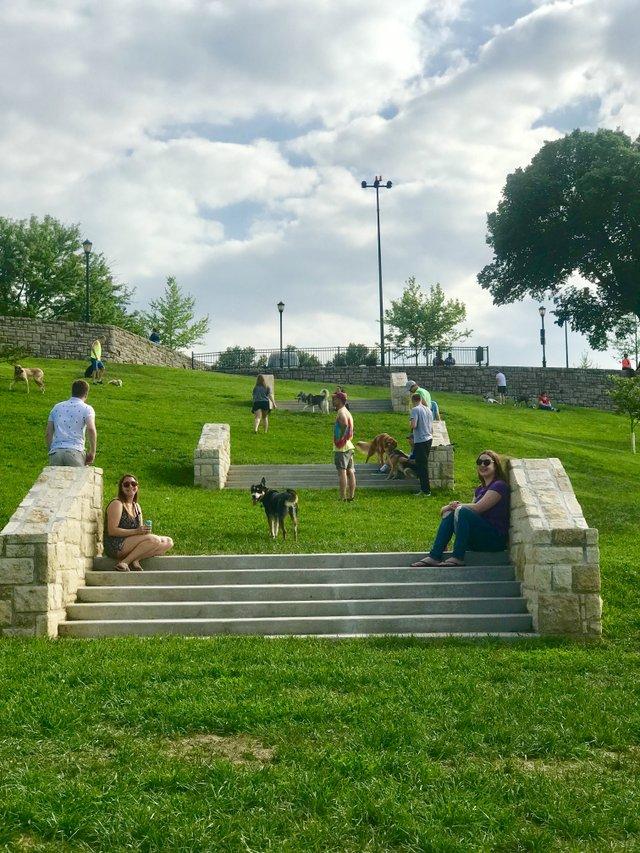 West Terrace Dog Park 4.jpg