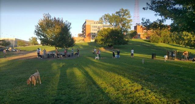 Penn Valley Off Leash Dog Park 3.jpg